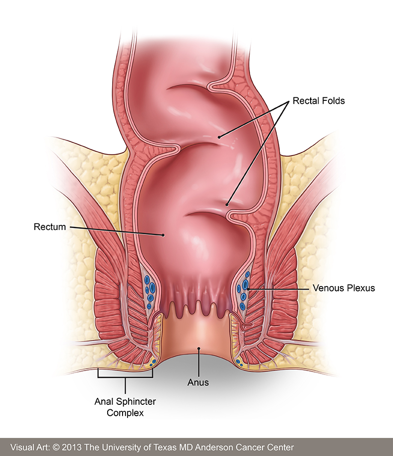 Anal pain cancer
